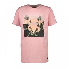 Cars Panni Tee heren shirt rose