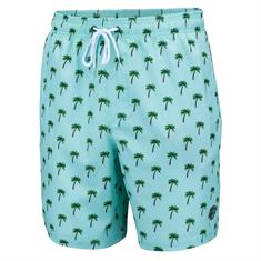 Falcon Dray Green Palms heren beach short mint