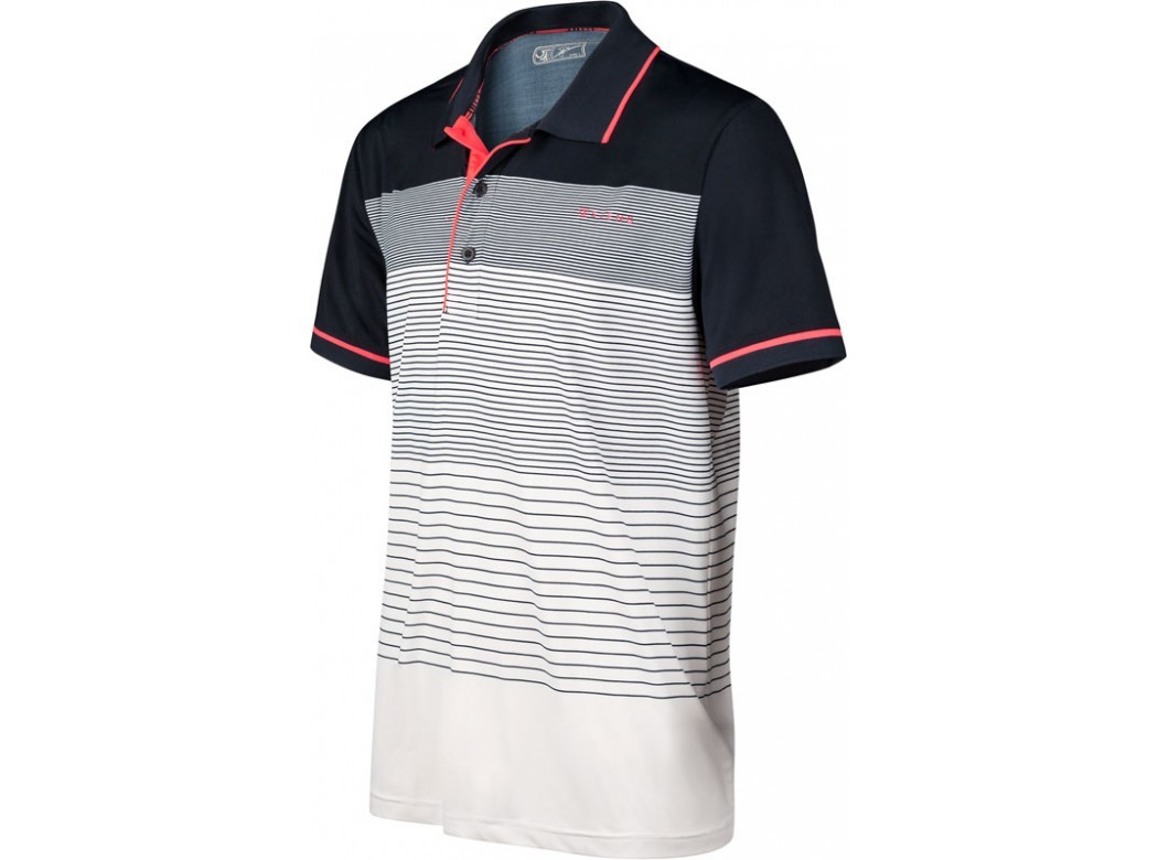c95af773e21 Sjeng Schalken Anderson Heren Polo heren tennisshirt wit van polo's